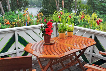 better living: Balcony Greenery