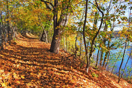 Riverside path in autumn photo