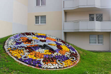 better living: Flower Clock
