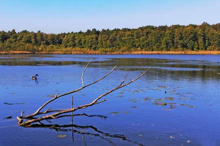 Wupatz Lake photo