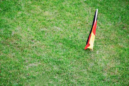 deutschland fahne: Rasen mit Deutschland-Flagge