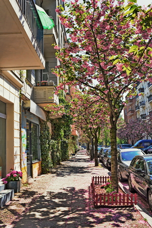prenzlauerberg: Spring in Berlin