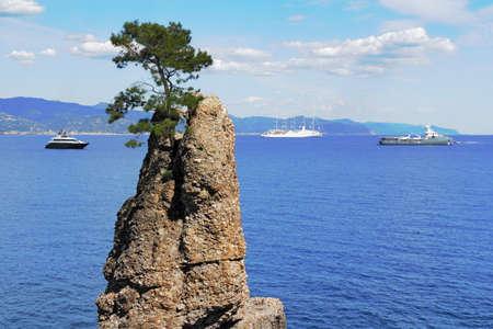 super yacht: Coast in front of Portofino