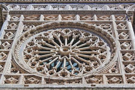 rosette: Dom Carrara Rosette