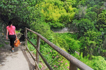 ''cinque terre'': Hiking Cinque Terre