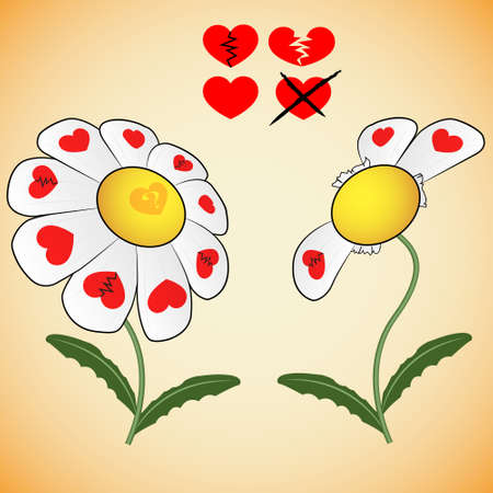 divination: Divination on daisy of love with hearts