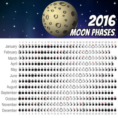 moon phases: Moon Phases Calendar 2016. Cartoon moon, Vector Illustration