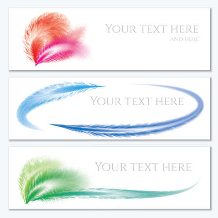 downy: Set of banners with feathers. Banner with your text here.