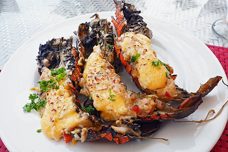 grilled lobster thermidor topr with cheese served on white dish