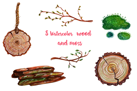 maleza: Forest watercolor illustrations - wood and moss. All elements are isolated. Perfect for Wedding invitation, greeting card, postcard, poster, textile, print etc.
