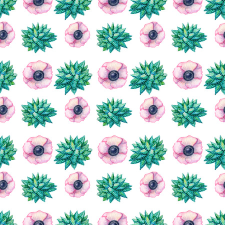 Watercolor seamless pattern texture - succulents plants and flowers anemone pink on white background Hand painted raster