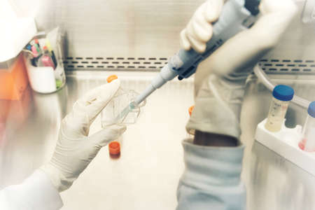 The women researcher using pipette and cell culture flask do the aseptic technique for changing the medium of adherent cell culture is needed to maintain cells in numeral growth. Stock fotó
