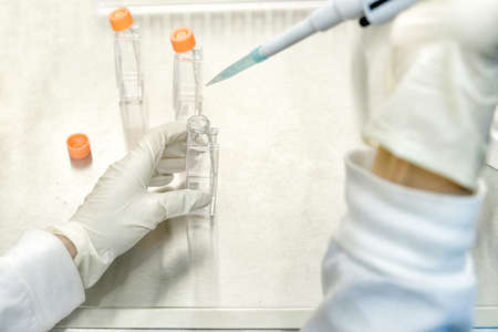 The women researcher using pipette and cell culture flask do the aseptic technique for changing the medium of adherent cell culture is needed to maintain cells in numeral growth.