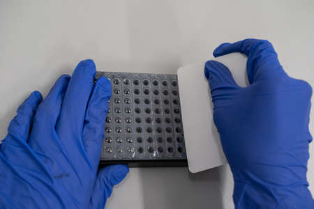 PCR plate is covered with a strong adhesive sealing film that can secure plate during PCR cycling. Stock fotó - 139101143