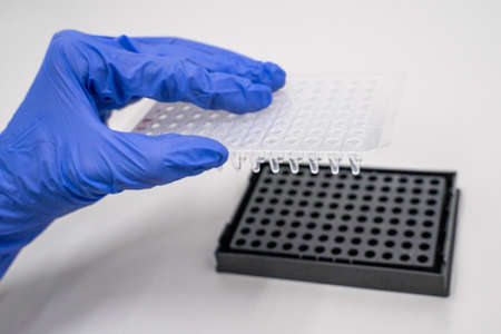 Samples of RNA were prepared in 96 well for real-time PCR (polymerase chain reaction) that can detect amount of specific gene expression .The reaction combines the first-strand cDNA synthesis reaction and real-time PCR reaction in the same tube.