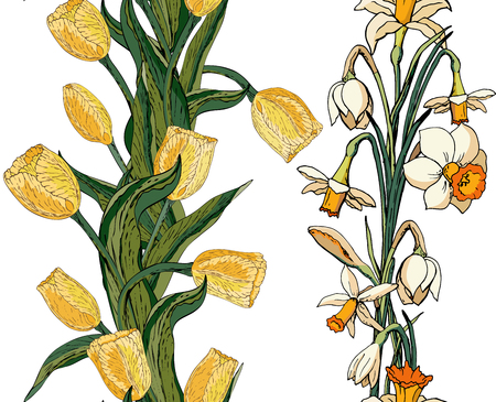 Vector floral seamless pattern with yellow tulips and daffodils (narcissus). White background
