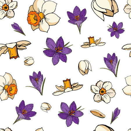 Vector floral seamless pattern with crocuses and daffodils (narcissus). White background Çizim