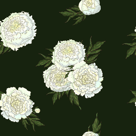 Vector peonies. Seamless pattern of white flowers. Bouquets of flowers on a dark green background. Template for floral decoration, fabric design, packaging or clothing.