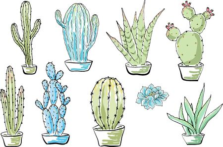 Vector set of cacti. Cartoon colored isolated objects on a white background. Multicolored hand drawn illustration. Иллюстрация