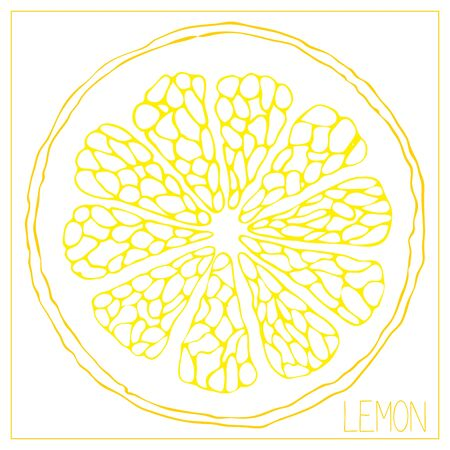 Vector silhouette of lemon slices. Isolated drawing fruit on a white background. Juicy healthy food design element. Vector stock illustration