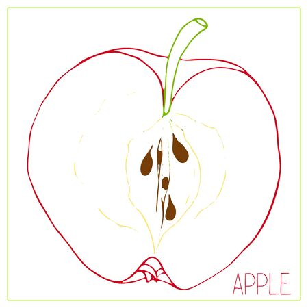 Vector silhouette of apple slices. Isolated drawing fruit on a white background. Juicy healthy food design element. Vector stock illustration Ilustração