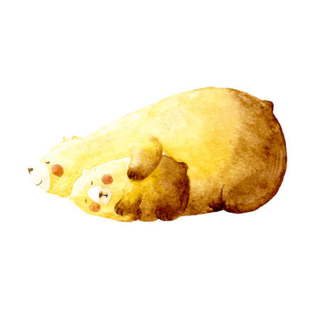 baby and mother: Watercolor hand painted illustration of mama bear and cute baby bear on white background