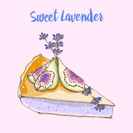 Hand drawn vector illustration of sweet dessert cake with lavender flowers and figs. Sweet lavender
