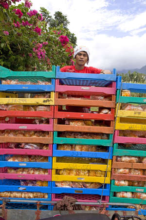 Maao, Negros Oriental, Philipine Islands - 1/7/2012 - Brightly colored, plastic trays are used to carry bread and rolls to small stores, sari sari, throughout the Philippine countryside. All these boxes are stacked and roped to the sidecar of a motorcycle Stock Photo - 14612360