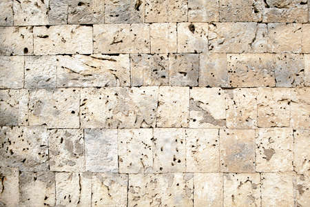 coquina: Resumen de textura de fondo de una pared hecha de bloques cortados de caliza coralina o coquina