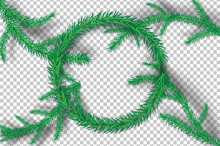 Christmas tree branches on tranparency background.vector