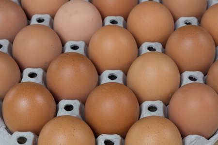 brown eggs: Brown Eggs in Carton