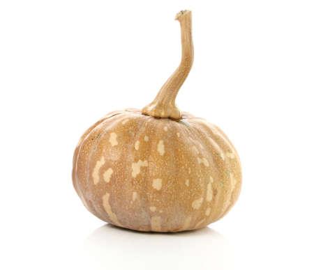 Raw thai pumpkin on white background Фото со стока