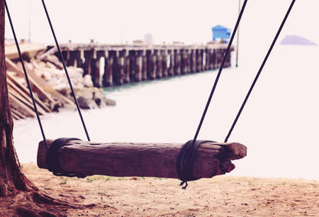 A wooden swing in a tree on the beach