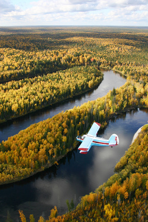 The Siberia. The Autumn Taiga. The little airplane fly over forest.  The river flows adown under airplane.