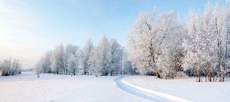 The Winter. The Freezing day. The Snow rests upon the land and tree. The Sled way. Stock Photo
