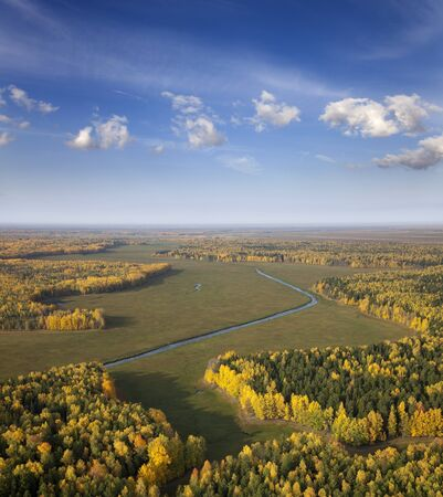overhand: The Aerial view overhand of autumn forest.
