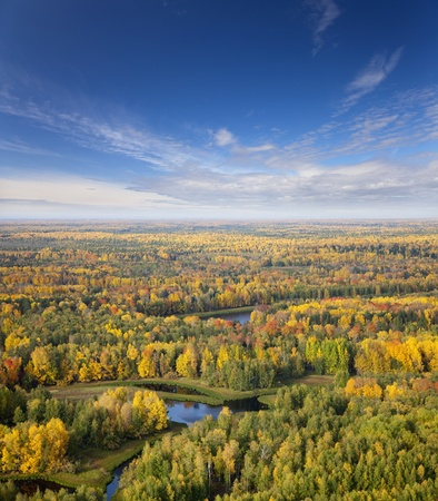 horizon over water: The Aerial view overhand of autumn forest.