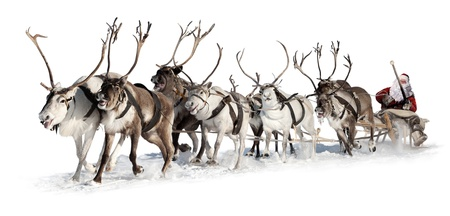 Santa Claus rides in a reindeer sleigh. He hastens to give gifts before Christmas. This is fast team of eight deer. Stock Photo