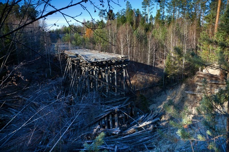 Puente destruido en el bosque photo
