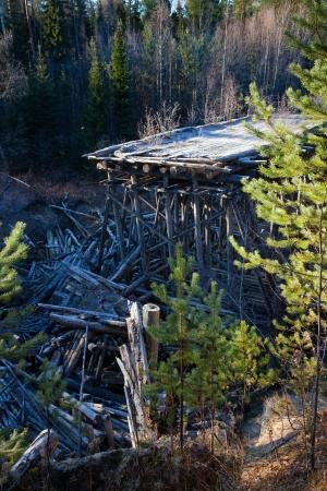 brige: Destroyed bridge in the forest