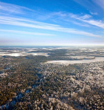 overhand: Aerial view of forest of plain during a winter day.