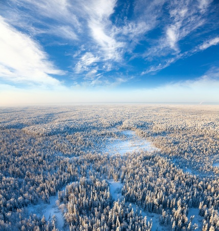 Aerial view of forest river in time of winter day Stock Photo - 17440516