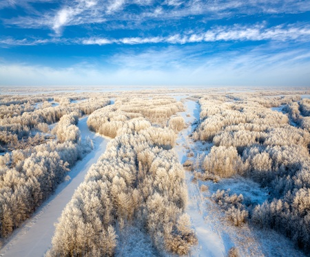 Aerial view of forest during cold winter day photo