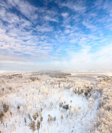 Aerial view of forest in hoarfrost during frozen winter day.  A winter forest on rising in a hard frost. photo