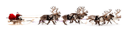 Santa Claus rides in a reindeer sleigh. He hastens to give gifts before Christmas. photo