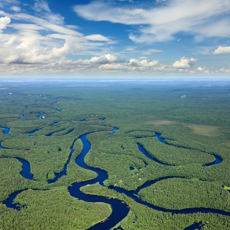 horizon over water: Aerial view of forest river during summer.