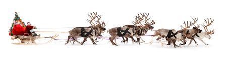 サンタ クロースがトナカイのそりに乗る。彼はクリスマス前にプレゼントを与えるために急ぐ。