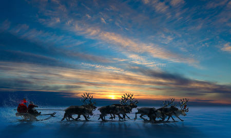 running reindeer: Santa Claus rides in a reindeer sleigh. He hastens to give gifts before Christmas.