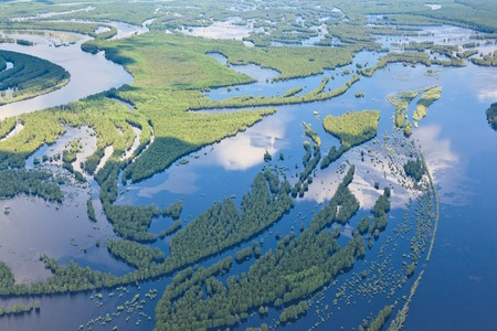 river view: Aerial view over forest river in flood period.