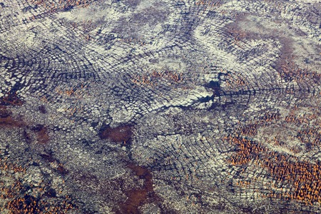 overhand: Aerial view of the tundra in autumn.